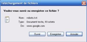 Enregistrer robots.txt